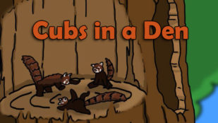 Cubs in a Den