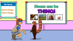 Review New Phonics Skills