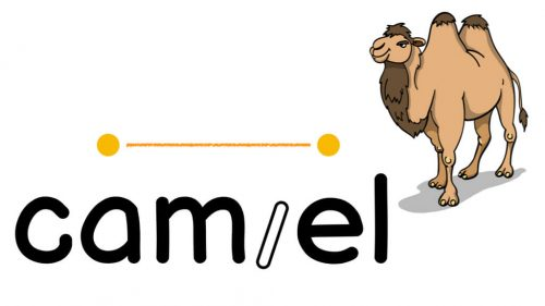 Camel Word Strategy