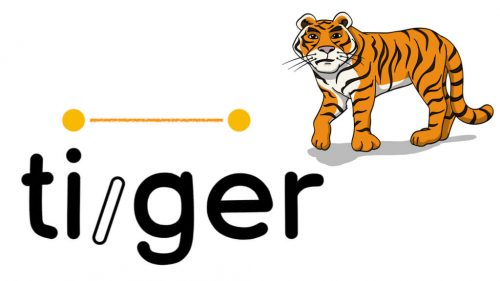 Tiger Word Strategy