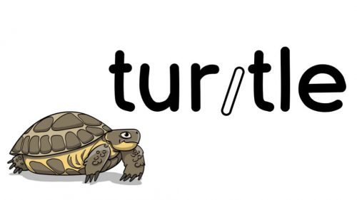 Turtle Word Strategy