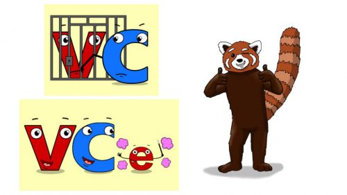 Word Fluency Practice: VC vs VCe